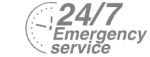 24/7 Emergency Service Pest Control in East Sheen, SW14. Call Now! 020 8166 9746